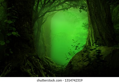 Fantasy forest with green mist and thick trees