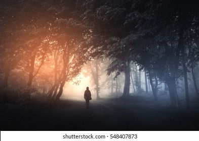 fantasy forest landscape. Mysterious surreal light in gloomy dark forest with fog between trees and man walking on natural path