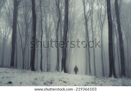 fantasy forest in winter with man