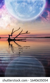 Fantasy landscape with driftwood reflecting in the water below enormous planet rising in the starry sky. E-book cover design template. Elements of this image are furnished by NASA