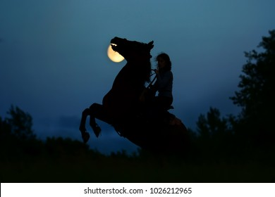 Fantasy moonlight with silhouette of the horse rearing up. Wild stallion with rider under full moon in night. Magic African landscape, atmosphere background.