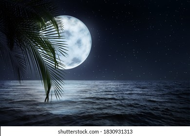 Fantasy night. Palm leaves and full moon in starry sky over sea