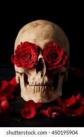 Fantasy skull portrait with roses in eyes on black background