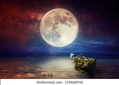 Fantasy starry night sea after sunset, boat full of flowers, pigeon flying, blue red cloudy sky on water wave reflection on horizon skyline nature landscape concept artistic design raster illustration