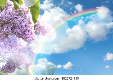 Fantasy world. Beautiful rainbow in sky with fluffy clouds over lilac flowers