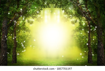 Fantasy world. Enchanted forest with magic lights and sunlit way between trees - Shutterstock ID 1857701197
