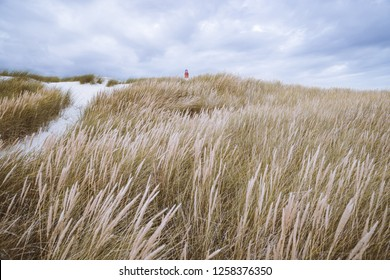 Far away lighthouse on sea grass dunes in Amrum Germany.