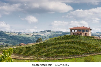 Farigliano, Piedmont, Italy - September 17, 2011: Wine hills, vineyards and a farmhouse in Langhe, the largest wine region in Piedmont (Unesco World Heritage Site).