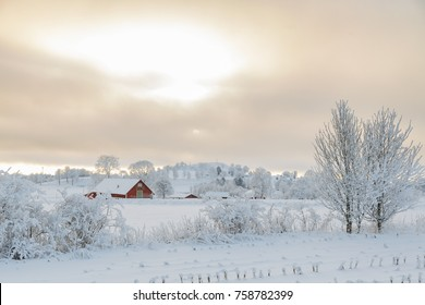 Farm barn in a cold winter landscape with snow and frost