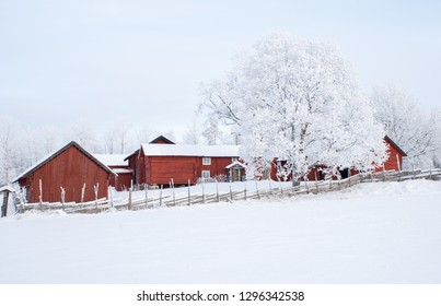 Farm barn and house in a cold winter landscape with snow and frost