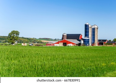 Farm Buildings with Silos in the America Countryside on a Clear Autumn Day