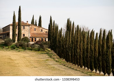 Farm in central Tuscany and typicalc landscape of Tuscany, Italy