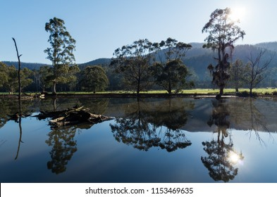 Farm dam outside Marysville in Murrindindi Shire in Australia at dawn