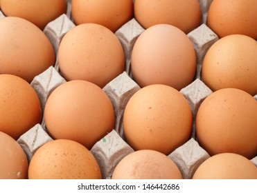 Farm egg in paper container