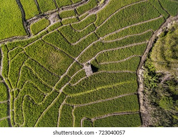 Farm field aerial photography view