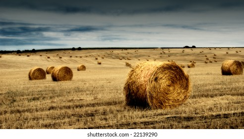 A farm field with a crop of grain / straw gathered into hay bale with a cloud full sky.