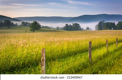 Farm field and distant mountains on a foggy morning in the rural Potomac Highlands of West Virginia.