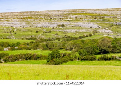 Farm field and rock mountain in Burren way trail, Ballyvaughan, Clare, Ireland