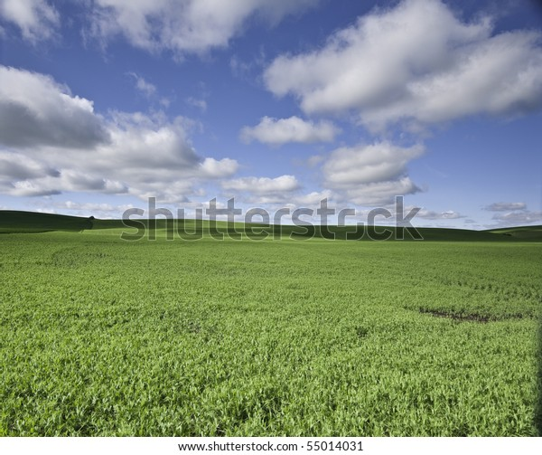 Farm field rolling hills in the background with fluffy clouds.