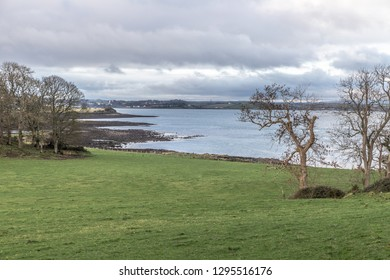 Farm field and Strangford lough, Northern Ireland, UK