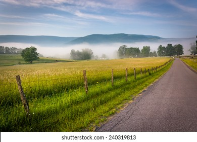 Farm fields along a country road on a foggy morning in the Potomac Highlands of West Virginia.