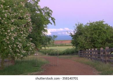 farm fields in historic world heritage longford brickendon area tasmania
