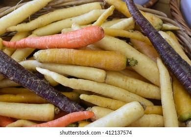 Farm Fresh Carrots in a Basket