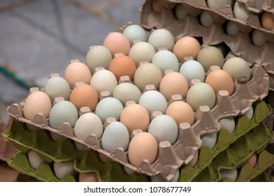 Farm fresh eggs in a stack