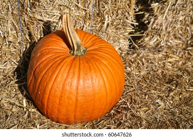 Farm fresh  orange pumpkin sitting on top of a bunch of haybales.