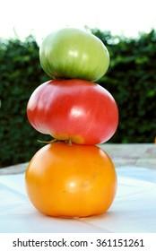 farm fresh tomatoes sale at a local farmer's market. Healthy eco food
