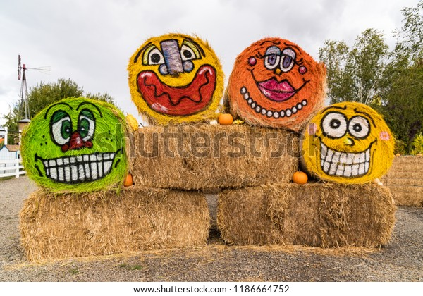 Farm Hay Bales Painted in funny Faces for Halloween