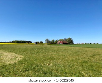 Farm house surrounded by green fields a wonderful spring day with clear blue sky.