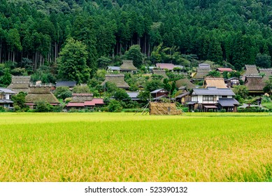 The farm house of the thatched roof is at Kayabuki no sato in Japan.