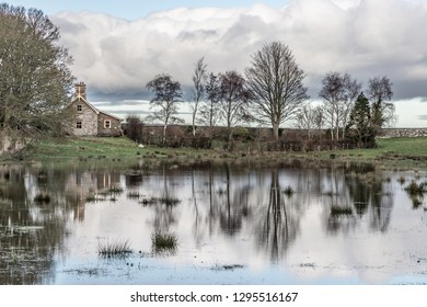 Farm house and trees reflection in Lake  in Strangford, Northern Ireland, UK