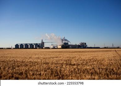 farm industry