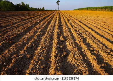 Farm land.The parallel lines of a sown field. Plowed fields agriculture, the image show the furrow in field after plowing