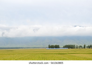 Farm Landscape with cloud and mountain
