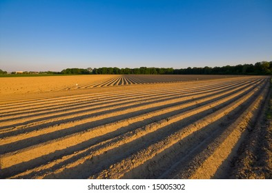 farm landscape with pattern made in the dry ground with blue sky