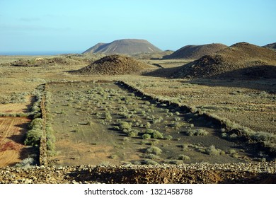 Farm on the Fuerteventura island, Spain