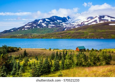 Farm on the shores of fjord in Iceland. The concept of extreme northern tourism. Rhyolitic mountains with not thawed snow on bank of the fjord