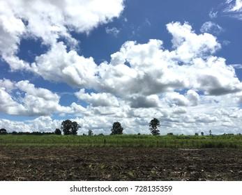 Farm over blue sky