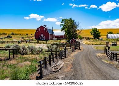 A farm with red barn near wasco in eastern Oregon
