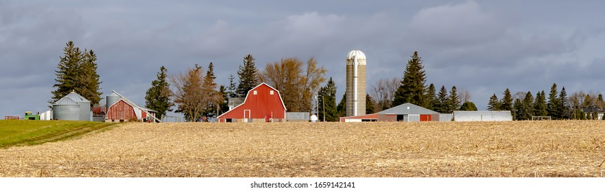 A farm with red barns and a silo and a corn field that has been partially harvested, near West Concord, Minnesota.