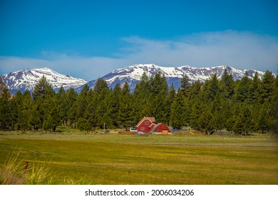 Farm with red buildings among the pines with snowcapped mountains in the background near Yosemite National Forest in California USA