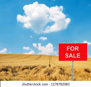 Farm with FOR SALE sign with cow in background
