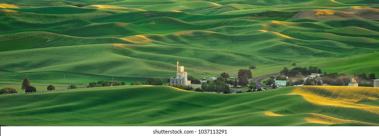 Farm town nestled in the hills of the Palouse region of eastern Washington state
