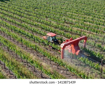 Farm tractor spraying pesticides & insecticides herbicides over green vineyard field. Napa Valley, Napa County, California, USA, 04/18/2019