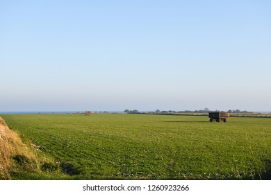 Farm wagon standing in a green field at the swedish island Oland