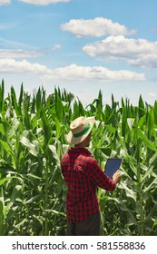 Farmer or agronomist with hat using digital tablet computer in cultivated corn field plantation. Modern technology application in agricultural growing activity. Concept Image.