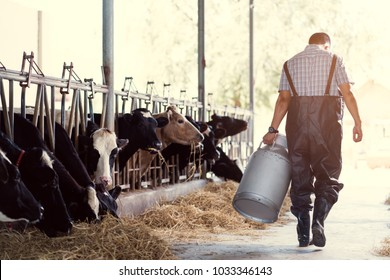 farmer asian are holding a container of milk on his farm.walking out of the farm